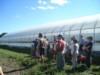 La Terre Ferme Visite de ferme-10